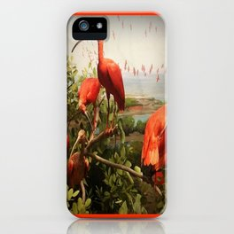 Flock of  Coral Colored Ibis Grooming iPhone Case