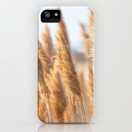 Watercolor Seed, Grass Seed 01, Janes Island, Maryland iPhone Case