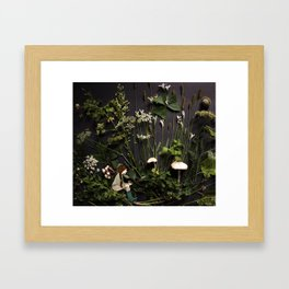 Bridie and the Robins in the Forest of Shamrocks Framed Art Print