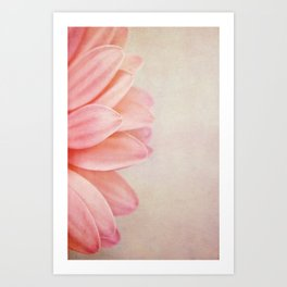Pretty in Peach Art Print