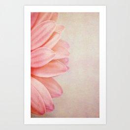 Pretty in Peach Art Print