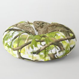 Barred owl mother and child Floor Pillow