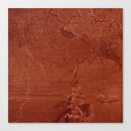 Red Clay and Concrete  Canvas Print