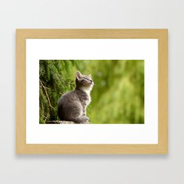 MEOW THERE Framed Art Print