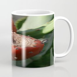 Prickly Pear Cactus Fruit - Indian Fig  Coffee Mug