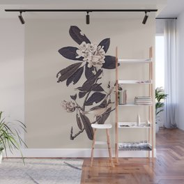Cardellina Wall Mural