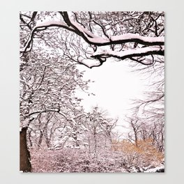 Wintertime is coming Canvas Print
