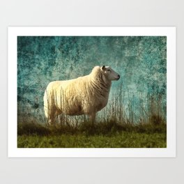 Vintage Sheep Art Print