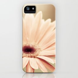 Peach Daisy Flower Photography, Brown Nature Floral Botanical Photo iPhone Case