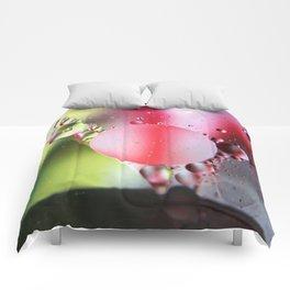 MOW12 Comforters