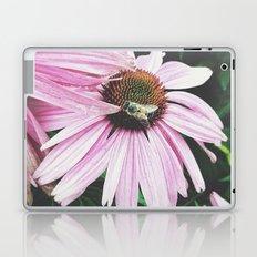 Prick Laptop & iPad Skin