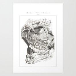 Human Anatomy Art Print LIVER STOMACH COLON Vintage Anatomy, doctor medical art, Antique Book Plate Art Print