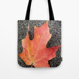 Water color of a sugar maple leaf Tote Bag