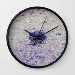 Shy Hermit Crab Wall Clock