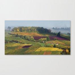 Swiss Vineyards Canvas Print