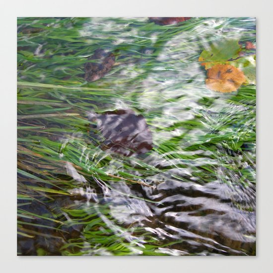 wild stream I Canvas Print