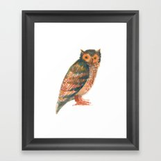 Owl & co. Framed Art Print