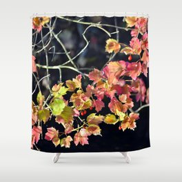 AUTUMNAL POETRY SOUND Shower Curtain