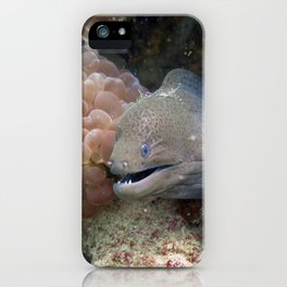 Moray Eel iPhone Case