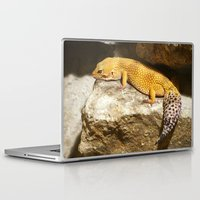 lizard Laptop & iPad Skins featuring Lizard by GardenGnomePhotography