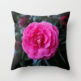 Comely Camellia Throw Pillow