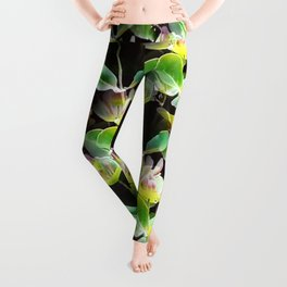 Honeysuckle Leggings