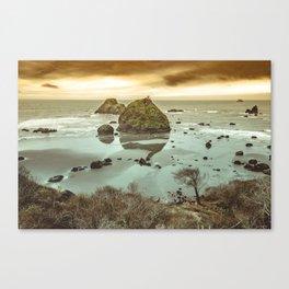 California Ocean West Coast Canvas Print