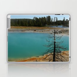 Amazing Hot Spring Colors Laptop & iPad Skin