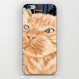 Oliver the Sniffy Red Tabby Cat iPhone Skin