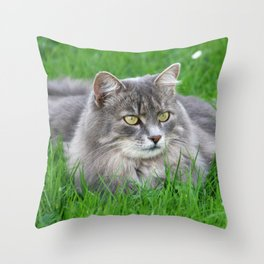 Persian cat in the grass Throw Pillow