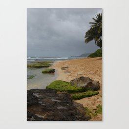 Moody Lost Beach Canvas Print
