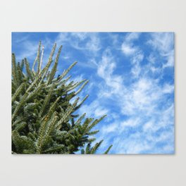 Christmas Tree and Blue Skies Canvas Print