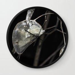 Silver dollar plant Wall Clock