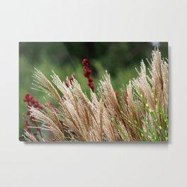 Peaceful Wild Grass Metal Print