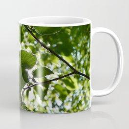 Sunlight Canopy Coffee Mug