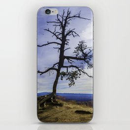 My Tree iPhone Skin