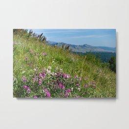 Flowering Meadow Metal Print