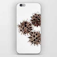 gumball iPhone & iPod Skins featuring Gumball Trio by Beth Thompson
