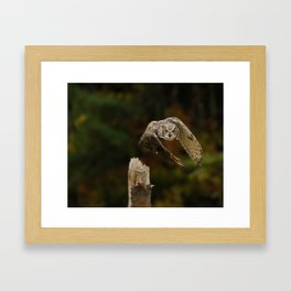 On A Mission Framed Art Print
