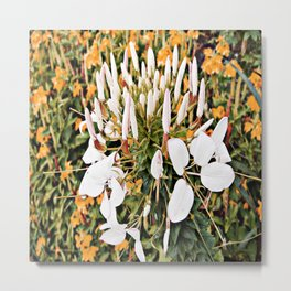 Flower watercolor painting pretty white  Metal Print