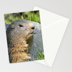 Groundhog Stationery Cards