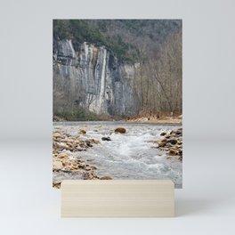 Arkansas Mini Art Print