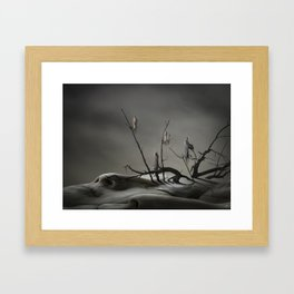 IIb Framed Art Print