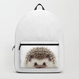Baby Hedgehog Backpack