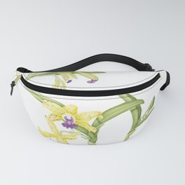 3 Stem flowering yellow and purple cattleya orchid Fanny Pack