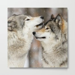 Winter Wolves Metal Print