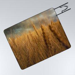 Harvest Time - Golden Wheat in Colorado Field Picnic Blanket