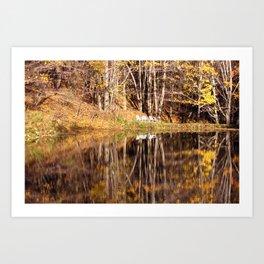 Tioga Pond Art Print