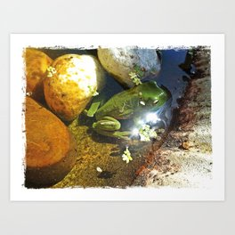 Frog in a Fountain Art Print