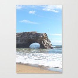Santa Cruz Natural State Bridge Canvas Print